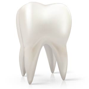 tooth1a-300x